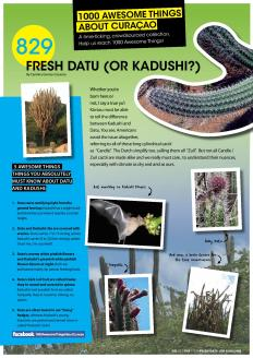 ATAC #829. Fresh Datu (or Kadushi)? featured in GO Weekly's 2nd edition of 2013.
