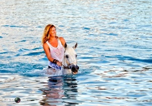 Swimming with Horses 4