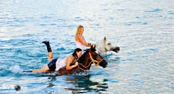 Swimming with Horses 8