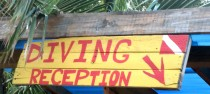 diving reception