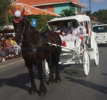 Horse Parade_Nice 2