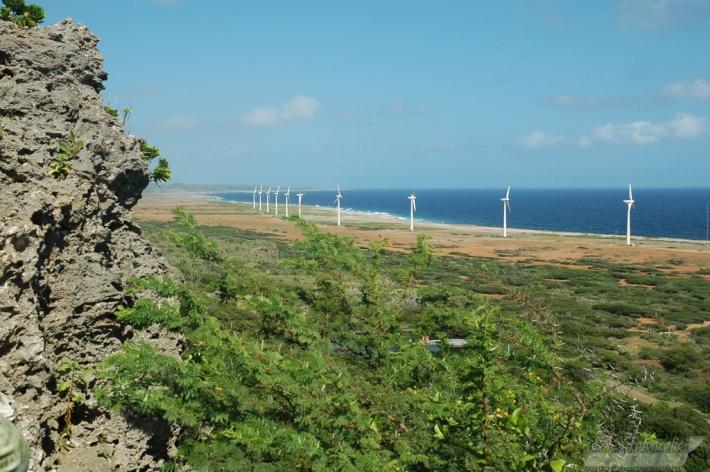 Tera Kora Wind Farm.
