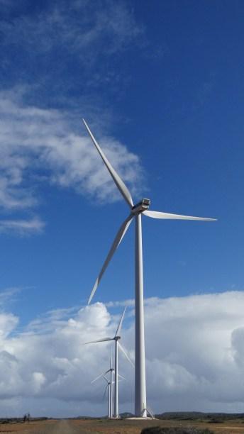 Wind Farm_Sta Catarina 4