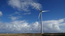 Wind Farming_Sta. Catarina 5