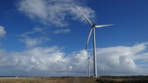 Wind Farming_Sta. Catarina 5