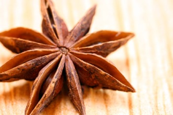 Star anise. Source: theperfectpantry.com.