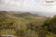 Overlooking Lagun.